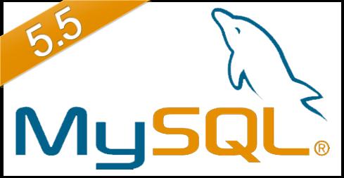 mySQL5.5