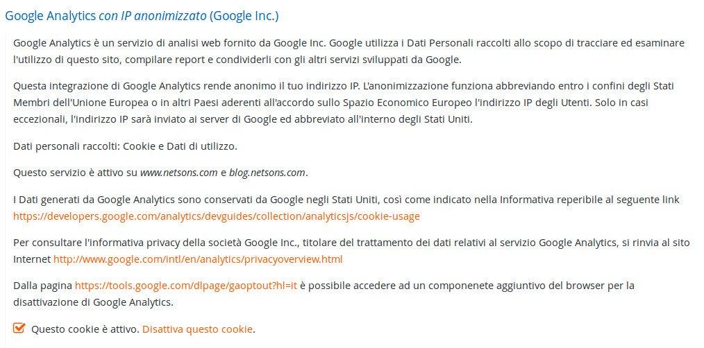 Descrizione informativa estesa Netsons dei cookie di Google Analytics