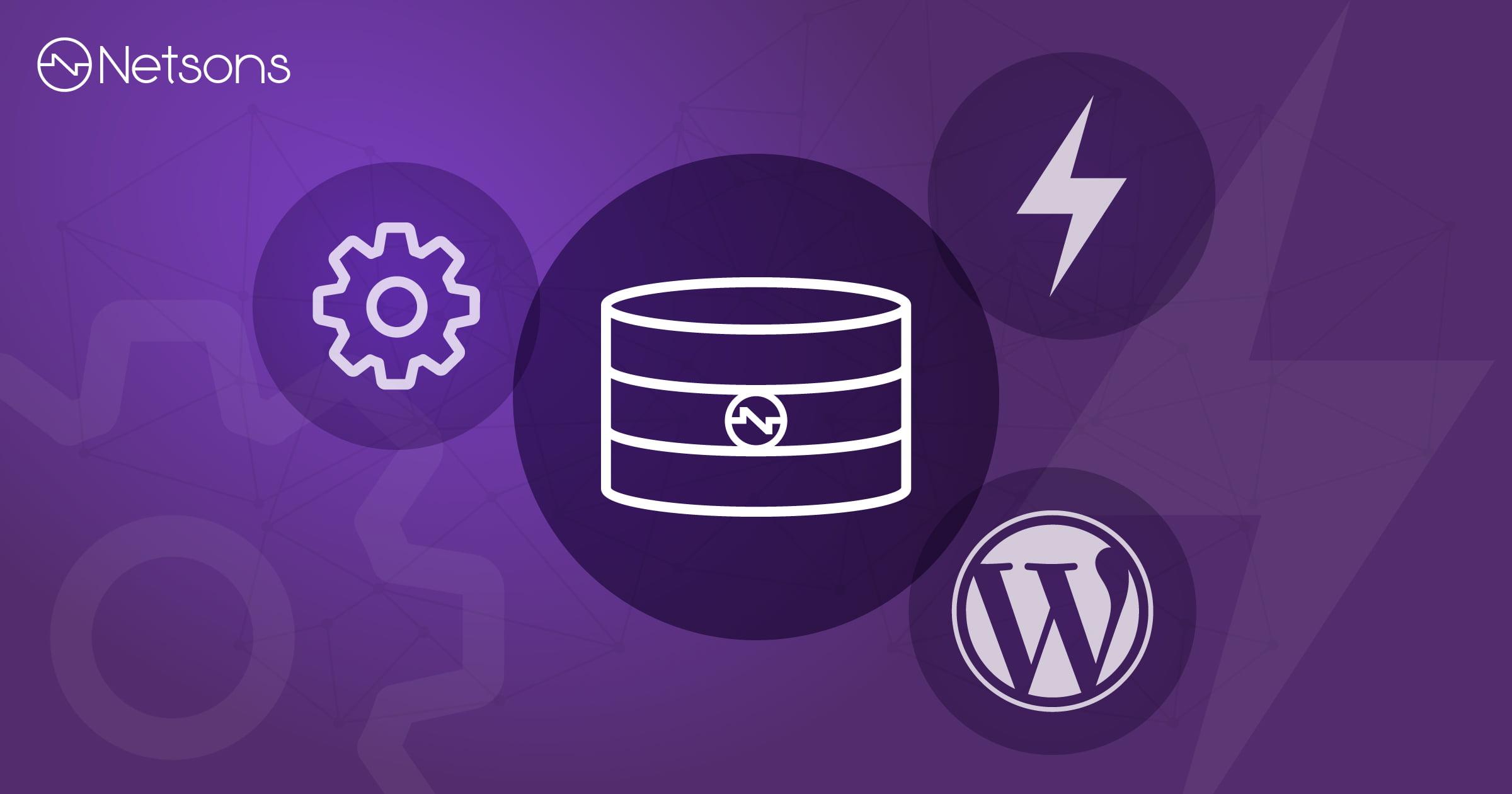 Come ottimizzare il database di WordPress 1