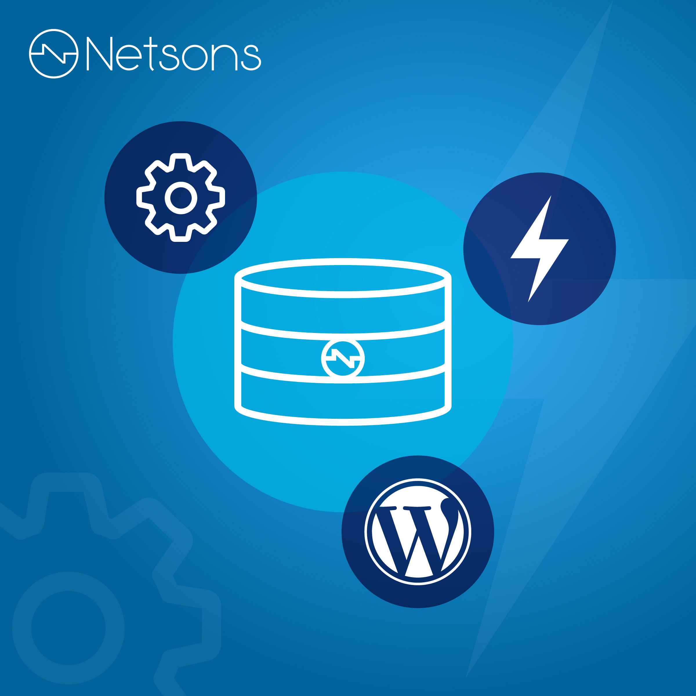 database wordpress